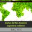 Analista de Meio Ambiente – Engenheira Ambiental