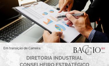 <span class='p-name'>Diretoria Industrial – Conselheiro Estratégico</span>