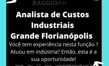 <span class='p-name'>Analista de Custos Industriais</span>